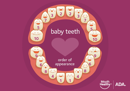 baby teeth - dentistry for infants